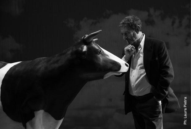 """MICHELE SERRA salirà sul palco del Teatro Toselli sabato 16 novembre con il monologo comico-sentimentale """"L'amaca di domani. Considerazioni in pubblico alla presenza di una mucca""""."""